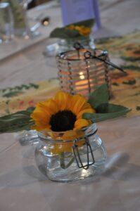 Kreiselblick Sonnenblume